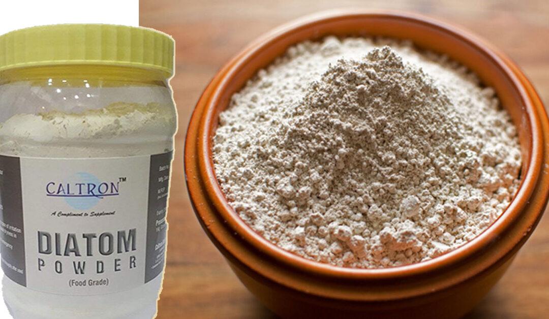 Food Grade Diatomaceous Earth Powder