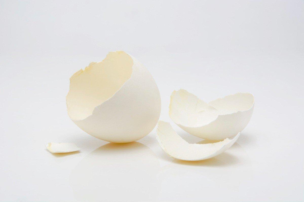 Egg Shell Calcium | Pharmaceutical Raw Materials